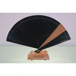Chinese Fan 11