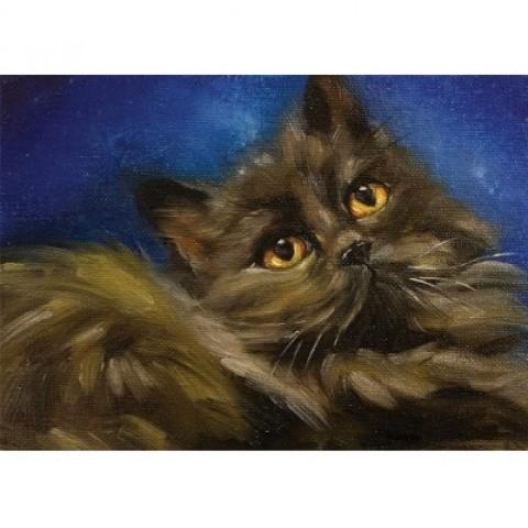 我家猫肖像2