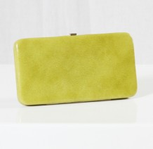 Light Green Case Wallet