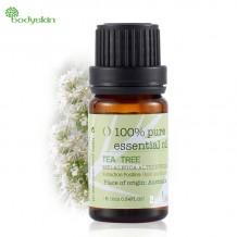 Árvore do Chá, óleo essencial