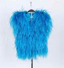 Vestuário de Penas (Azul)