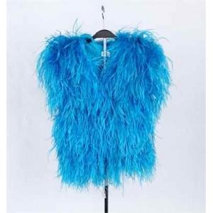 羽毛服装 (蓝色)