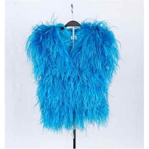 羽毛服裝 (藍色)