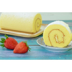 Frozen Swiss Roll