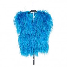 Feather Garment (Blue)