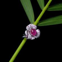 红宝石系列-红宝石钻石戒指-花园锦蔟之花红千日(全天然缅甸红宝石-无烧)
