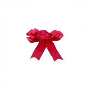 Ribbon Accessories (Pink Butterfly Ribbon)